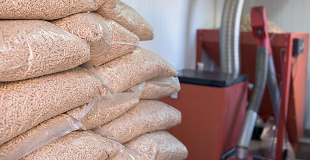 riscaldare casa senza gas caldaia a biomassa